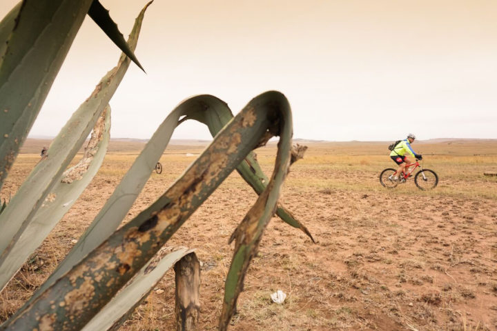 detour-trails-tours-bike-battle-bike-bush-adventure-south-africa