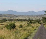 detour-trails-tours-bike-battle-mountain-bikes-extreme-bush-south-africa