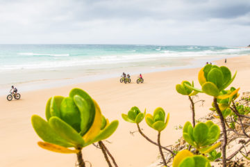 detour-trails-tours-maputaland-amble-adventure-ocean-bush-bikes-mozambique-fat-bikes-easy