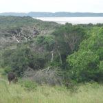 detour-trails-tours-maputaland-breakaway-adventure-fat-bikes-mozambique