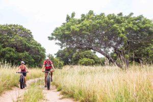 maputaland-amble-tours-mozambique-detour-trails-fat-bikes-adventure-bush-off-road-trees