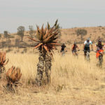 detour-trails-tours-bikes-battle-beer-bicycle-africa
