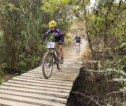 tours-kzn-bike-parks-kwazulu-natal-detour-trails-giba-gorge-bush-cycling-adventre