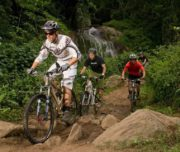tours-kzn-bike-parks-kwazulu-natal-detour-trails-giba-gorge-moderate-mountain-bikes-bush