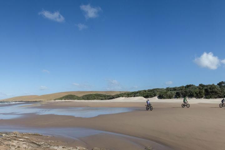 wild-coast-amble-tours-extreme-fat-bikes-adventure-africa